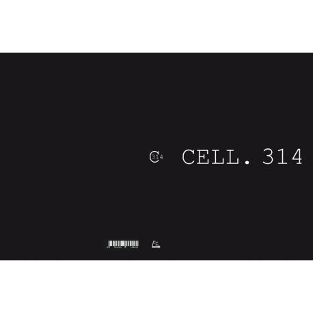 """"""" CELL. 314 """" de Gaëtan Verdier"""